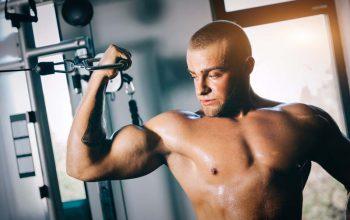 Möchten Sie etwas Muskeln aufbauen?