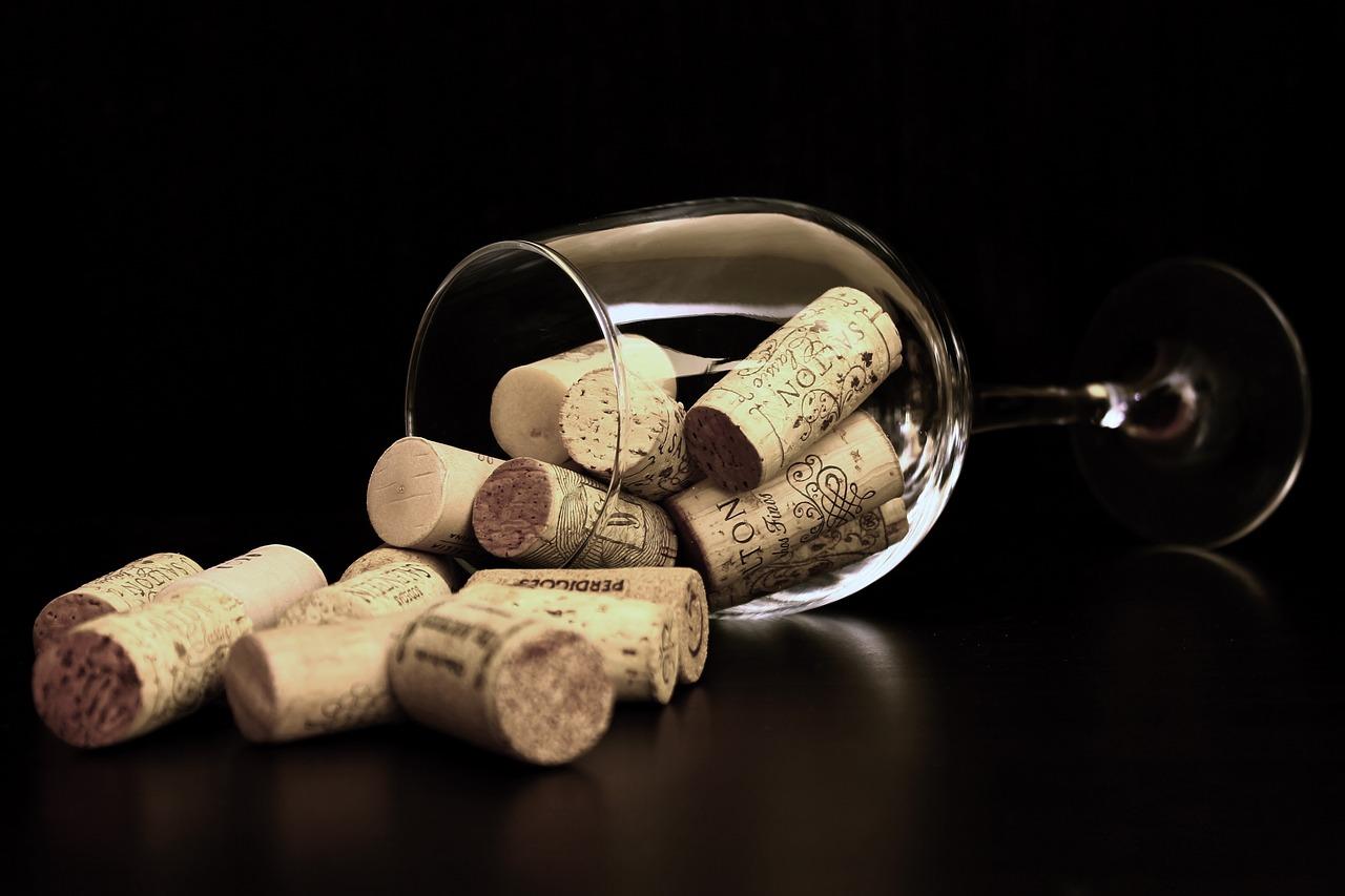 Alles, was Sie über Wein wissen wollten